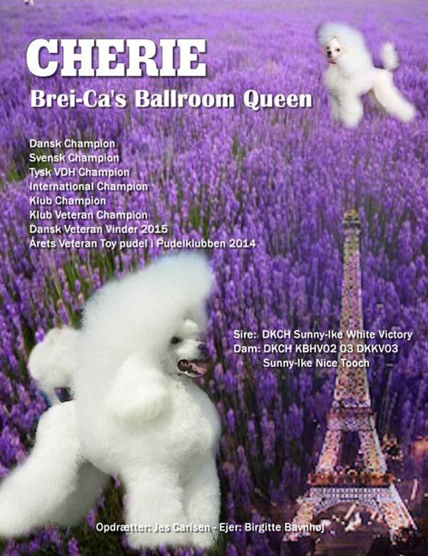 Cherie (Brei-Ca's Ballroom Queen)